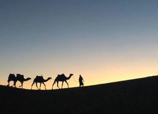 La mouraqqa'a de sayidina 'Omar