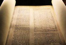 Le suivi de la Lumière, c'est le soutien du Messager d'Allâh ﷺ - THORA - JUIF - ISRAEL