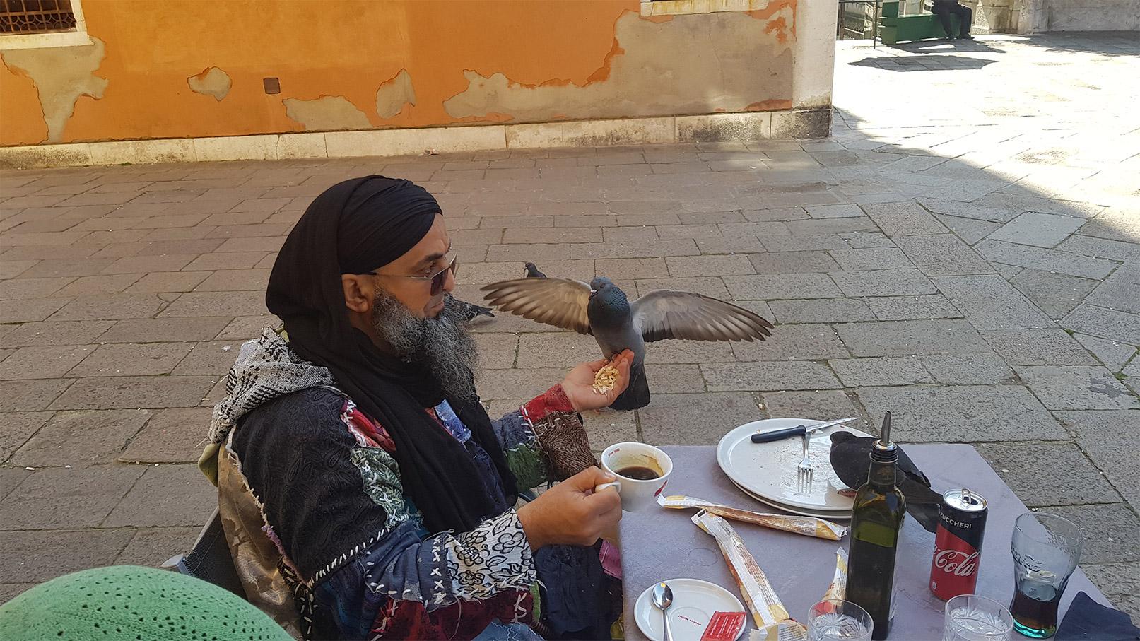 Les oiseaux, amis de sidi Shaykh à Venise